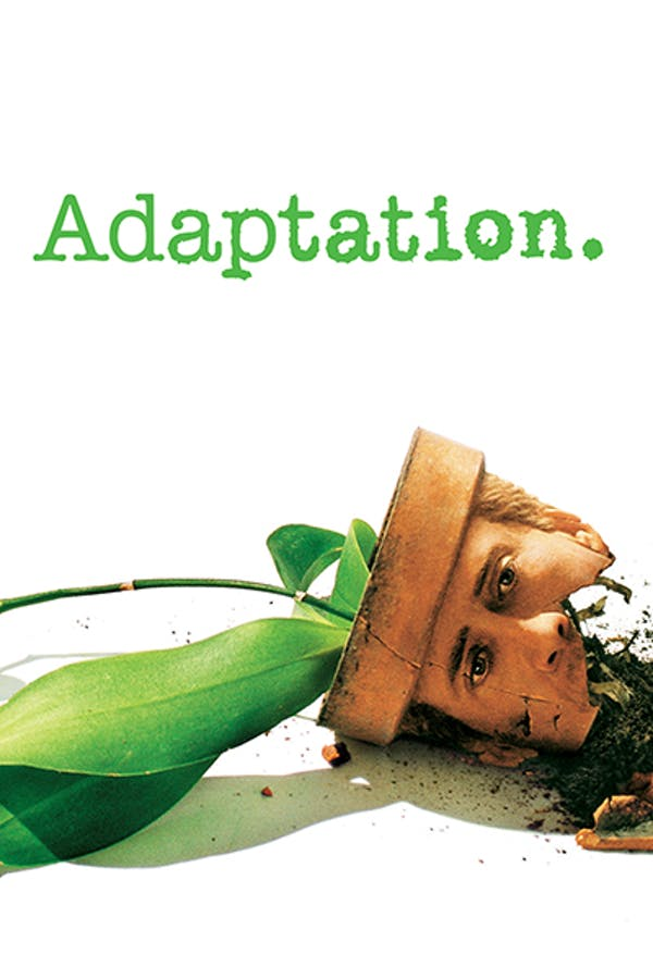 Adaption Stream