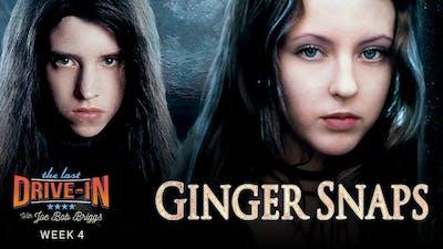 Week 4: Ginger Snaps